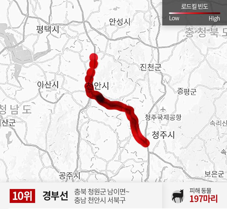 경부선 300~350km 구간 피해 동물 197마리