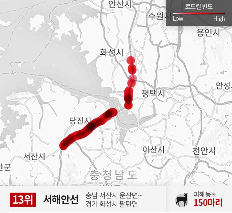 서해안선 250~300km 구간 피해 동물 150마리