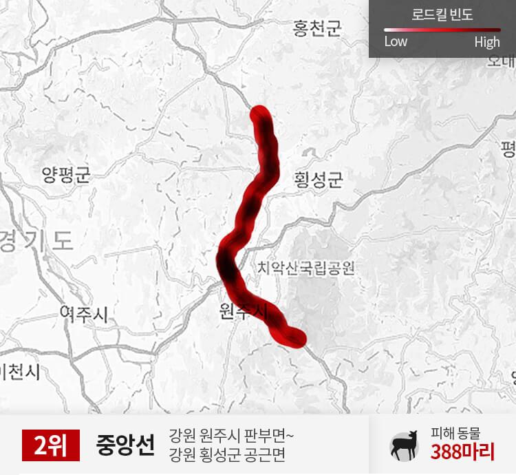 중앙선 300~350km 구간 피해 동물 388마리