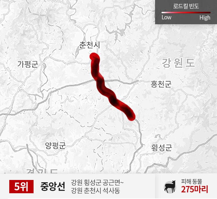 중앙선 350~400km 구간 피해 동물 275마리