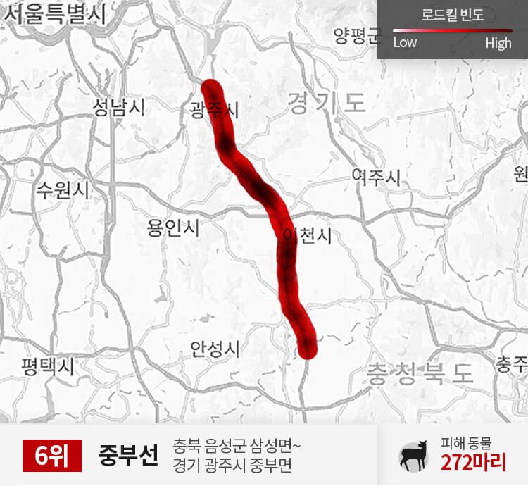 중부선 300~350km 구간 피해 동물 272마리