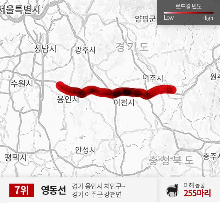 영동선 50~100km 구간 피해 동물 255마리