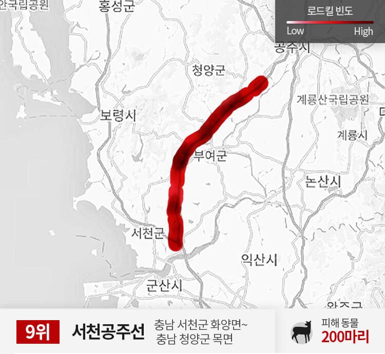 서천공주선 0~50km 구간 피해 동물 200마리